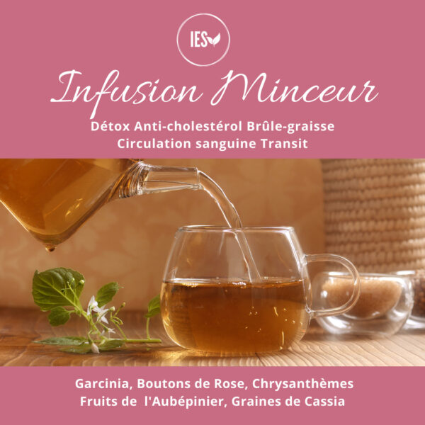 infusion minceur détox brule graisse drainage