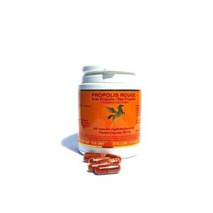 PROPOLIS ROUGE-200 gélules végétales