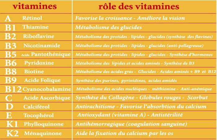 rôle des vitamines