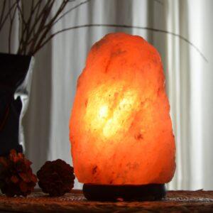Lampe en Cristal de Sel de l'Himalaya