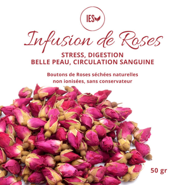infusion bouton rose